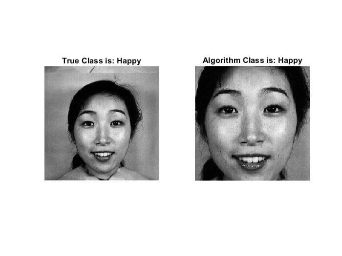 Wavelets-based facial expression recognition using a bank of support vector machines