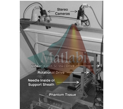 Image Guidance of Flexible Tip-Steerable Needles