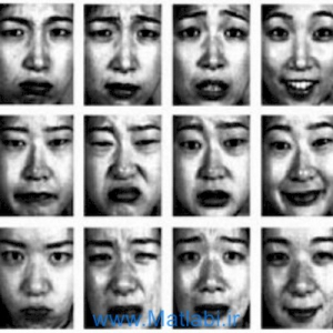 A New Facial Expression Recognition Method Based on Local Gabor Filter Bank and PCA plus LDA