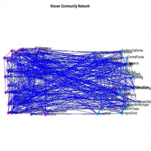 Fuzzy-rough community in social networks