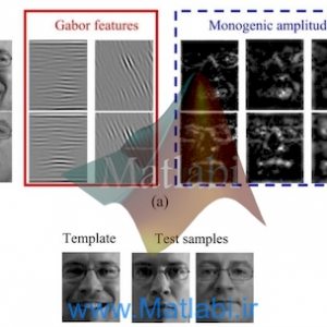Monogenic Binary Coding: An Efficient Local Feature Extraction Approach to Face Recognition