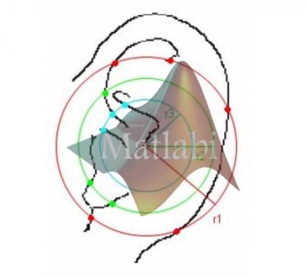 Ear Biometrics Based on Geometrical Feature Extraction