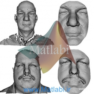 An efficient 3D face recognition approach based on the fusion of novel local low-level features
