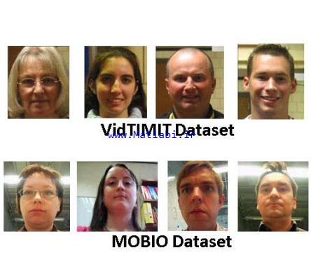 Adaptive Batch Mode Active Learning