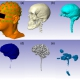 Automated MRI segmentation for individualized modeling of current flow in the human head